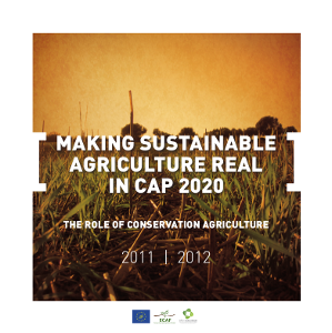 Portada Fact sheet: Making sustainable agricultura real in cap 2020